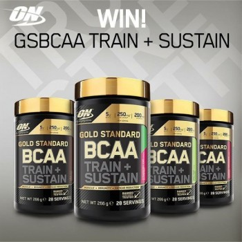 ON GOLD STANDARD BCAA 28 порций