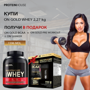 ON 100% WHEY PROTEIN + WORKOUT PACK